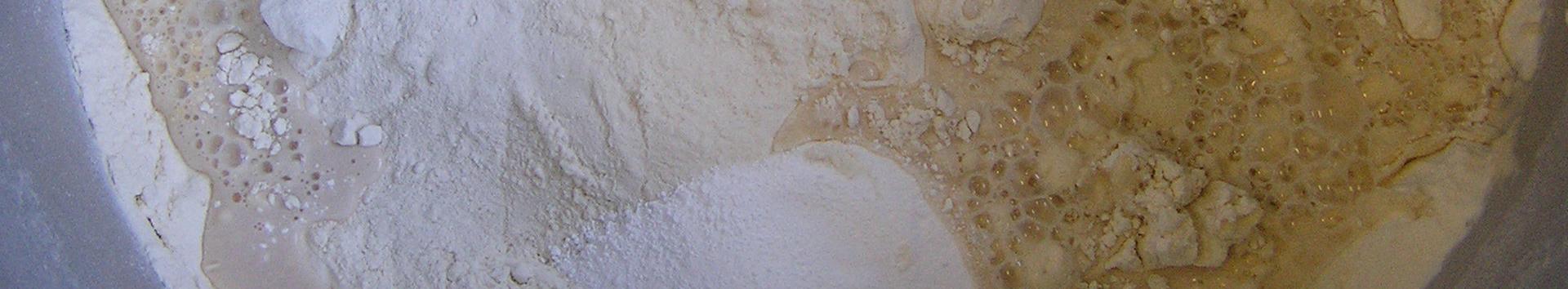 Biotecnología de la fermentación: levaduras industriales