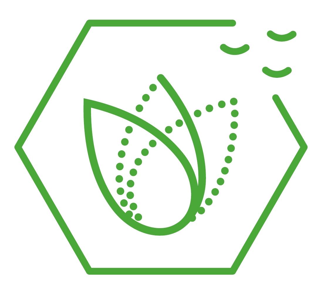 Logo SUSPHIRE